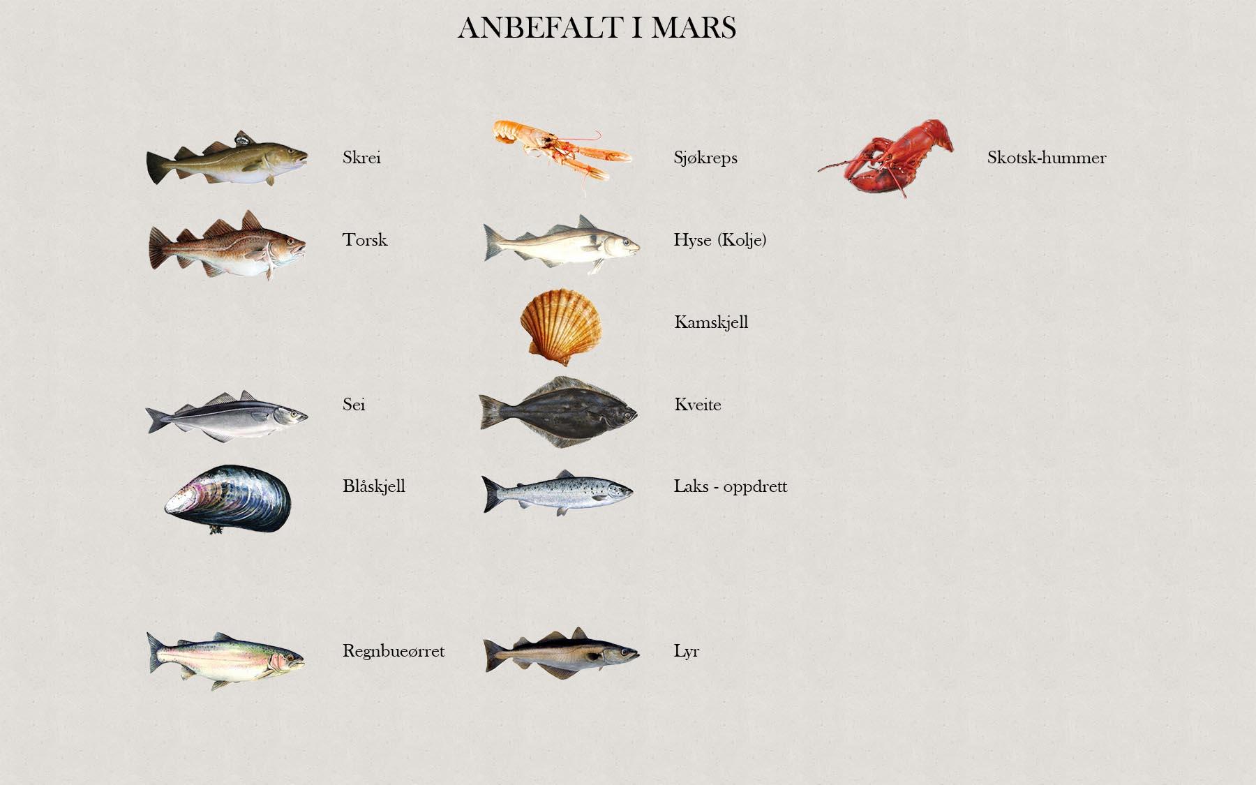 Fjelberg Fisk & Vilt. Mars